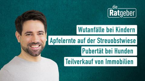 Moderator Daniel Johé sowie die Themen: Wutanfälle bei Kindern, Apfelernte auf der Streuobstwiese, Pubertät bei Hunden, Teilverkauf von Immobilien