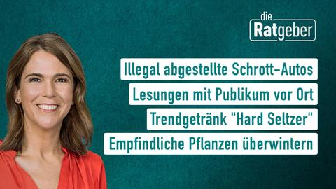 """Moderatorin Anne Brüning sowie die Themen: Illegal abgestellte Schrott-Autos, Lesungen mit Publikum vor Ort, Trendgetränk """"Hard Seltzer"""", Empfindliche Pflanzen überwintern"""