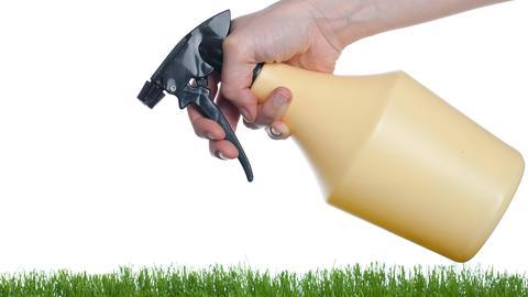 Jemand sprüht mit einer Flasche auf den Rasen.
