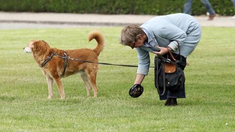 Eine Frau hebt Hundekot mit Beutel auf