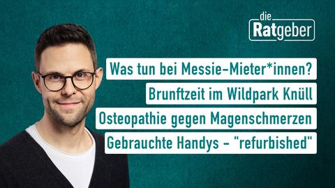 """Moderator Kai Fischer sowie die Themen: Was tun bei Messie-Mieter*innen?, Brunftzeit im Wildpark Knüll, Osteopathie gegen Magenschmerzen, Gebrauchte Handys - """"refurbished"""""""