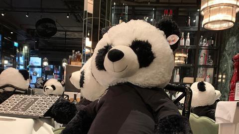 Pandabär auf Stuhl