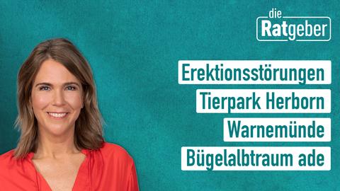 Die Themen: Errektionsstörungen, Tierpark Herborn, Warnemünde, Bügelalptraum adé