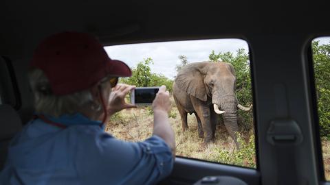 Ein Tourist macht ein Foto von einem Elefanten.