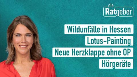 Die Themen: Wildunfäll in Hessen, Lotus-Painting, neue Herzklappe ohne OP, Hörgeräte