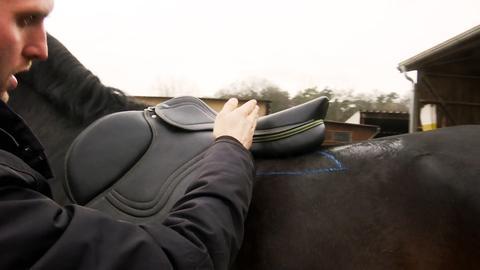 Sattler legt einem Pferd einen Sattel auf.