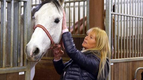 Besitzerin streichelt Pferd.