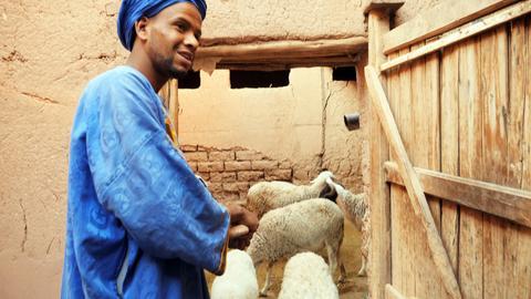 Schafzüchter vor einem Stall in Marokko