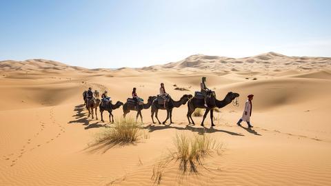 Karawane mit Dromedaren in der Wüste