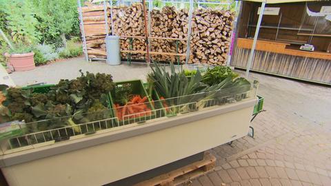 Verkaufsstand mit Gemüse.