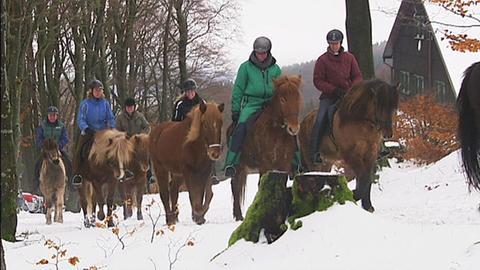 Wie Wanderpferdegruppe unterwegs in der verschneiten Rhön