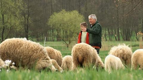 Ziegenbauer in der Rhön