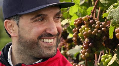 Rheingauer Wein auf neuen Wegen