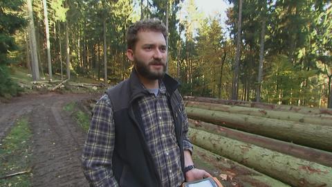 Erlebnis Hessen: Unbekannter Seulingswald