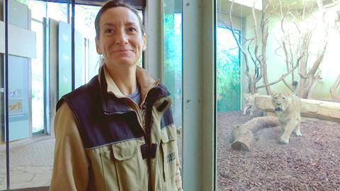Tierärztin Dr. Christina Geiger bei den Löwen im Frankfurter Zoo.