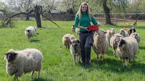 Stadtschäferin Melanie Brost auf einer Wiese mit ihren Schafen und dem Hütehund.