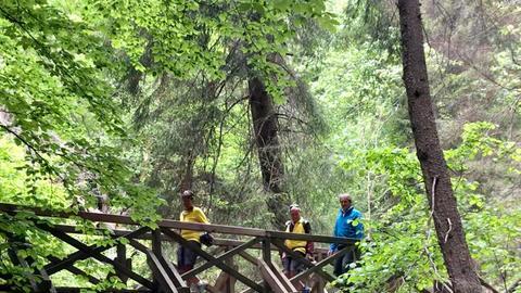 Drei Gründe für Schwarzwald Hinterzarten
