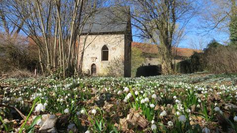 Der Schlosspark in Lehrbach.