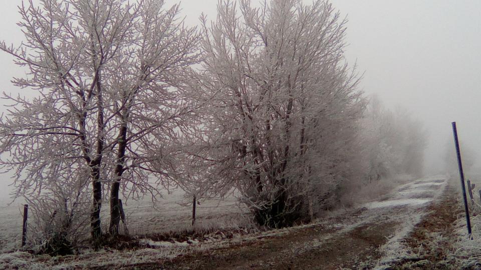 Regenradar Mosbach
