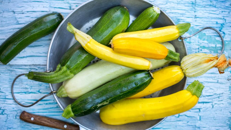 Zucchini rezepte gedunstet