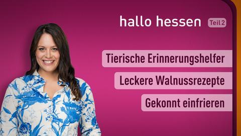 """Leonie Koch und die Themen bei """"hallo hessen"""" am 21. September: Tierische Erinnerungshelfer, Leckere Walnussrezepte, Gekonnt einfrieren"""