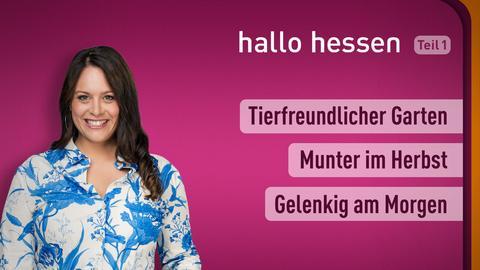 """Leonie Koch und die Themen bei """"hallo hessen"""" am 22. September: Tierfreundlicher Garten, Munter im Herbst, Gelenkig am Morgen"""