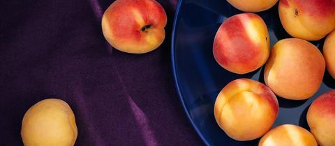 Aprikosen auf einem Teller