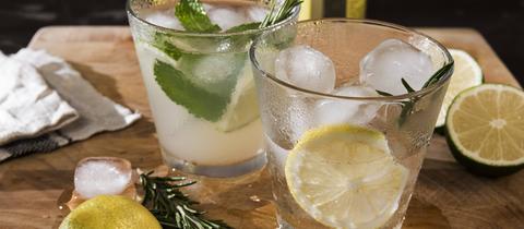 Zwei Gläser Gin Tonic mit Limette, Minze, Rosmarin und Eis und mit Limette, Minze, Rosmarin und Eis und mit Limette, Minze, Rosmarin und Eis und mit Zitrone, Rosmarin und Eis auf Holzgrund.