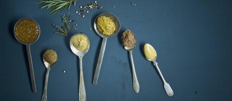 Hausgemachter Senf, verteilt auf Löffeln