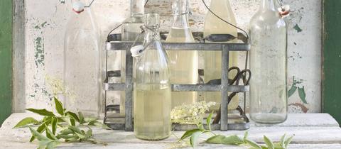 Holunderblüten Öl Essig Sirup in Flaschen abgefüllt
