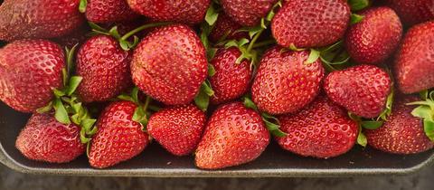 Erdbeeren in einem Gefäß