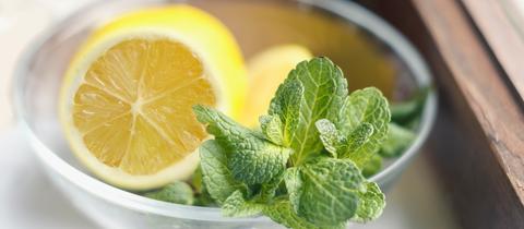 Zitronenmelisse und Zitrone