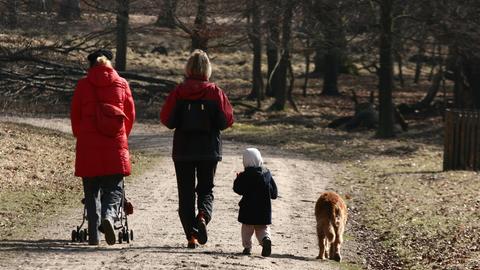 Eine Familie im Wald