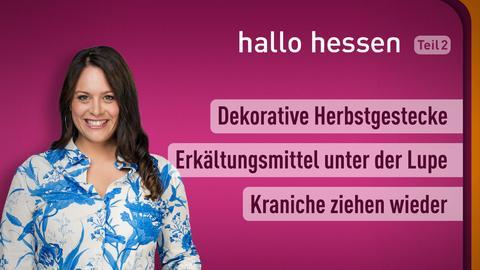 """Leonie Koch und die Themen bei """"halo hessen"""" am 13. Oktober: Dekorative Herbstgestecke, Erkältungsmittel unter der Lupe, Kraniche ziehen wieder"""