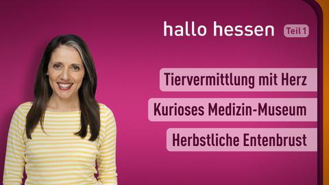"""Selma Üsük und die Themen bei """"hallo hessen"""" am 18. Oktober: Tiervermittlung mit Herz, Kurioses Medizin-Museum, Herbstliche Entenbrust"""