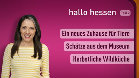 """Selma Üsük und die Themen bei """"hallo hessen"""" am 18. Oktober: Ein neues Zuhause für Tiere, Schätze aus dem Museum, Herbstliche Wildküche"""