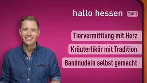 """Jens Kölker und die Themen bei """"hallo hessen"""" am 25. Oktober: Tiervermittlung mit Herz, Kräuterlikör mit Tradition, Bandnudeln selbst gemacht"""