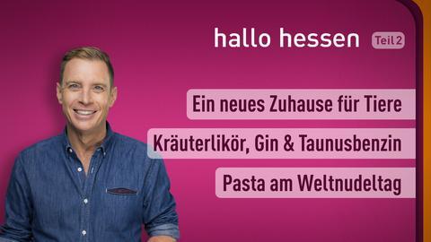 """Jens Kölker und die Themen bei """"hallo hessen"""" am 25. Oktober: Ein neues Zuhause für Tiere, Hochprozentiger Erfolg aus Bad Homburg, Pasta am Weltnudeltag"""