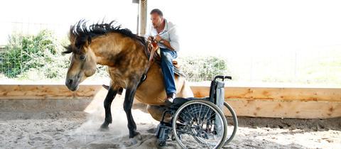 Timo Ameruoso im Sattel eines Pferdes