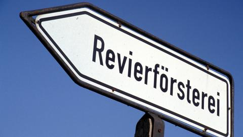 Revierforst