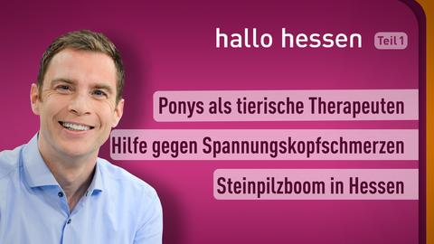 Moderator Jens Kölker sowie die Themen: Ponys als tierische Therapeuten, Hilfe gegen Spannunskopfschmerzen, Steinpilzboom in Hessen