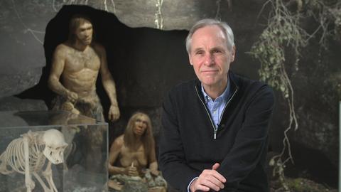 Mann sitz vor Ausstellungsobjekt mit einem Paar Neandertaler