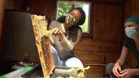 Anne Chebu entdeckelt Honig-Waben.