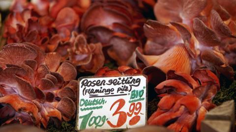Rosenseitlinge an einem Marktstand, zum Preis von 3,99 Euro für je 100 Gramm.
