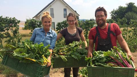 Herkules-Solidarische Landwirtschaft
