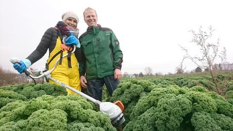 Gemüsebauer Stefan Ullrich zeigt Moderatorin Susanne Barfuß wie Grünkohl mit einer Motorsense geerntet wird.