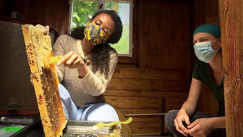 Anne Chebù mit einer Bienenwabe