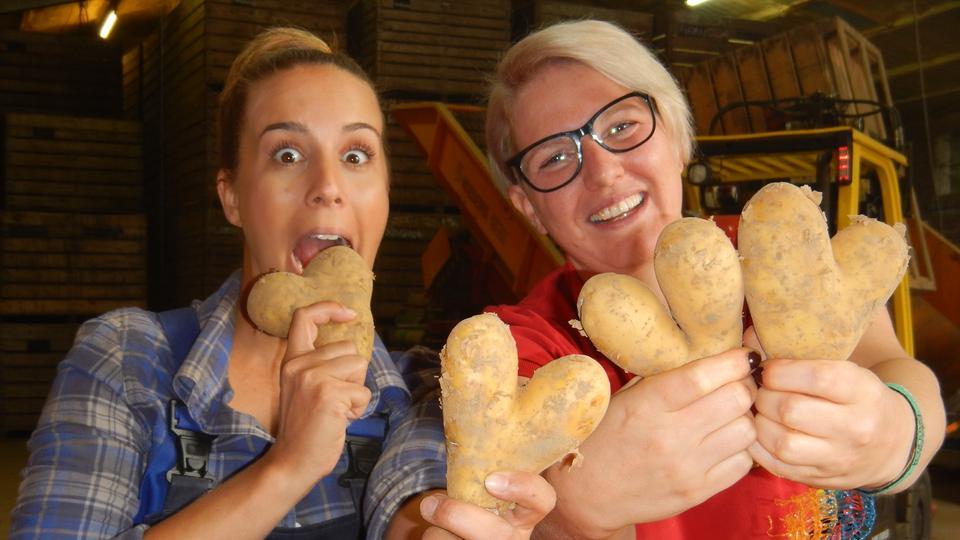 herukules - Kartoffelhof