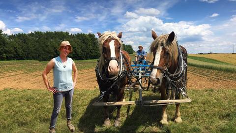 Rebecca Rühl mit Pferden auf dem Feld