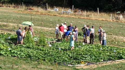 """""""Solidarische Landwirtschaft"""": Die Anteilsnehmer als """"Mit-Landwirte"""" unterstützen biologische Kleinbetriebe in der Region und helfen, dass Höfe überleben können."""